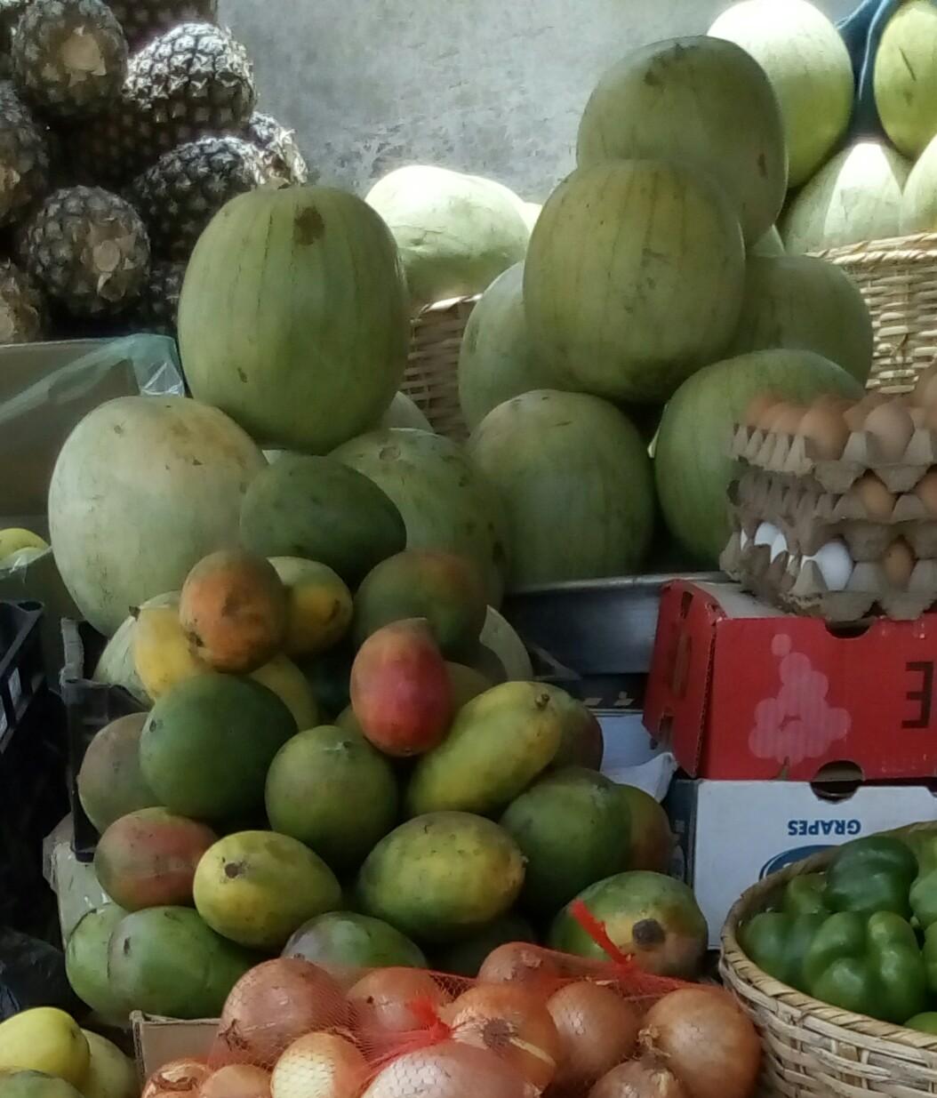 Nzara-agroalimentaire-clarisse-pastèque-fruits