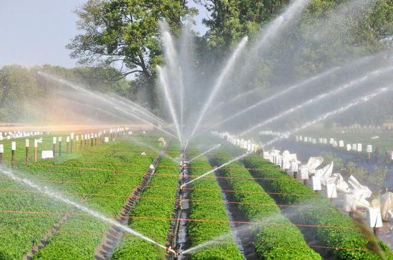 Des pompes solaires au profit des agriculteurs