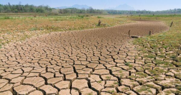 Nzara-Togo: La gestion durable des terres au cœur des débats-2