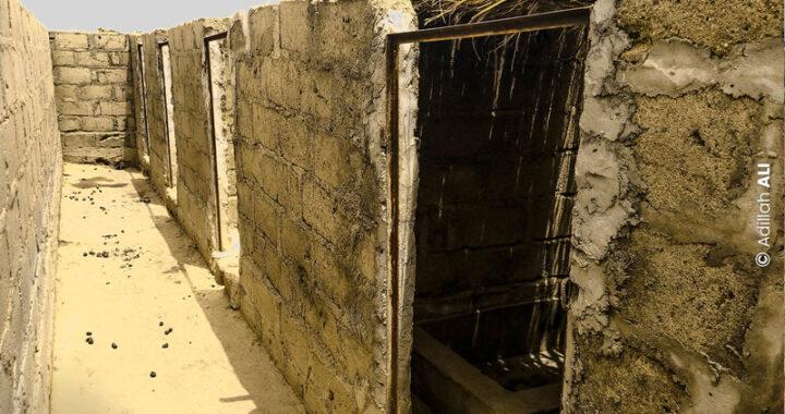 Togo: Repartir à zéro après la peste porcine
