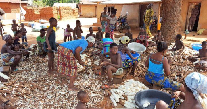 Recherche agricole : Le poids du producteur et du consommateur