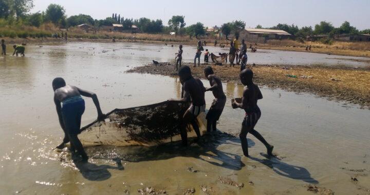 Togo : Une pêche hors du commun
