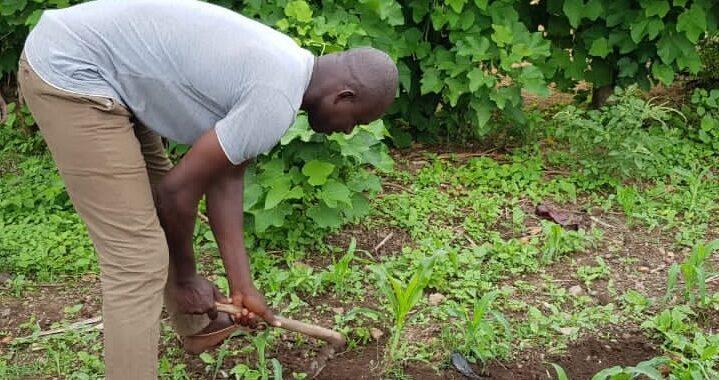 Dr DIWEDIGA Badabaté engagé pour la cause de la nature et des paysans.