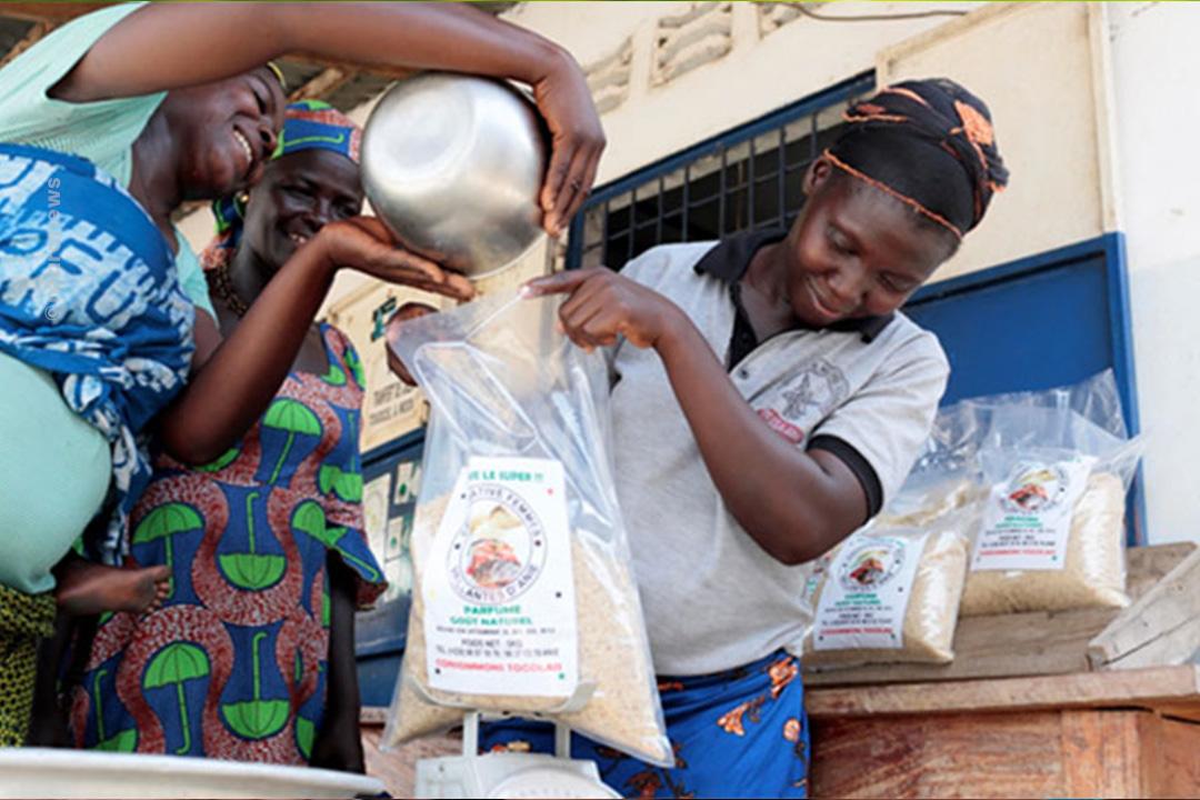 Un concours pour subventionner les Petites et moyennes entreprises (PME) et les coopératives innovantes a été lancé pour soutenir le développement de projets entrepreneuriaux à fort caractère innovant au Togo.
