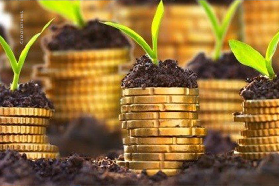 Pour une croissance accélérée et une création d'emplois dans le secteur de l'agriculture, le gouvernement togolais mise sur 5 grands projets