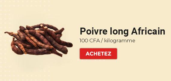 nzara-jobs-products-banner